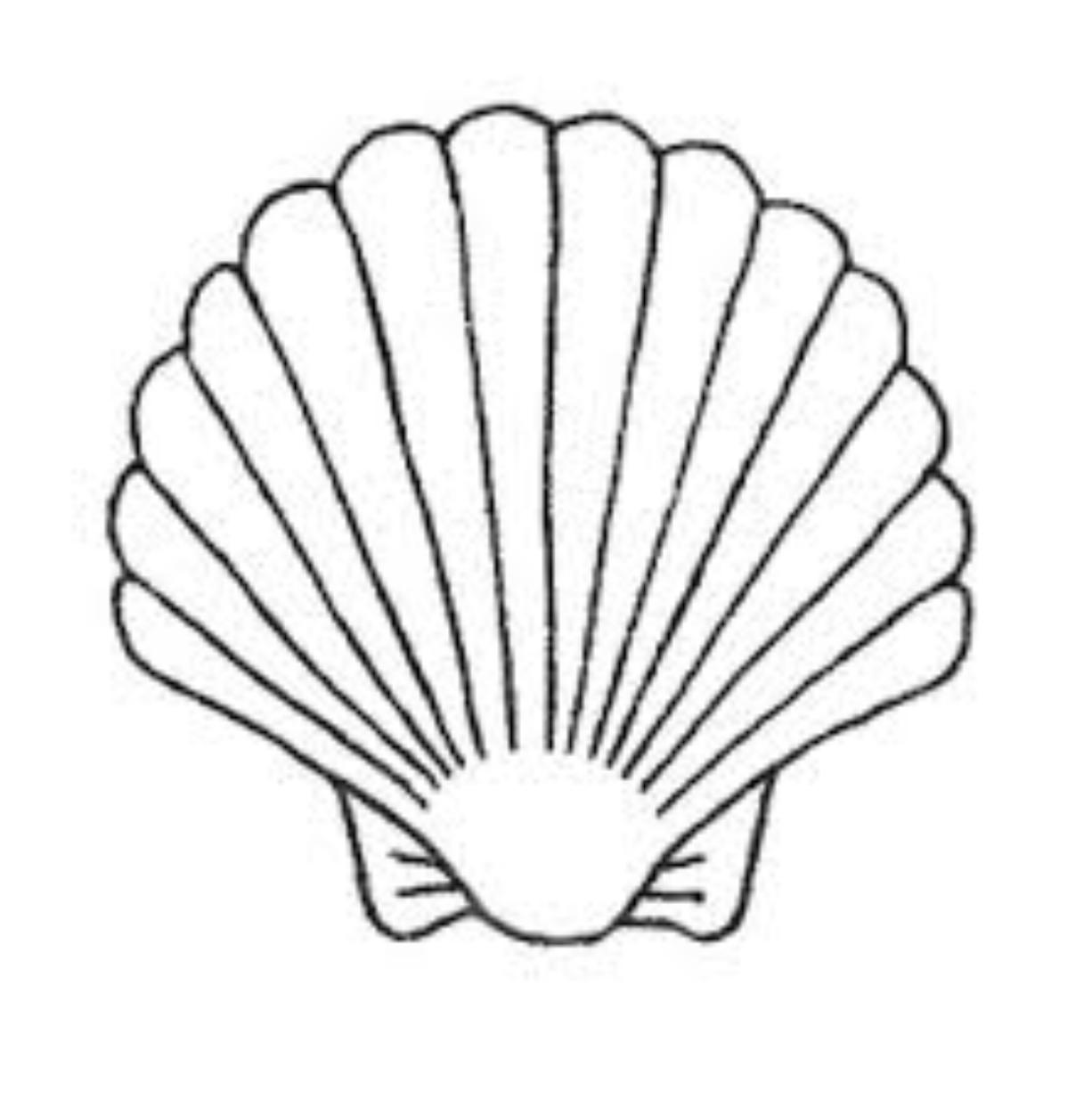 1226x1234 clam shell cheyennes bday shell tattoos, shell drawing