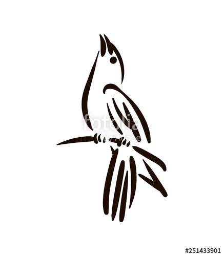 437x500 vector hand drawn bird line silhouette hand drawn illustration