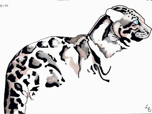 516x387 clouded leopard tattoos leopard tattoos, clouded leopard