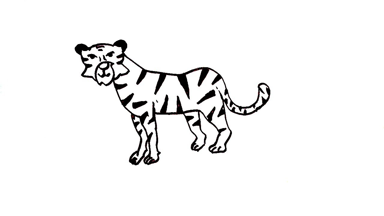 1280x720 How To Draw A Tiger