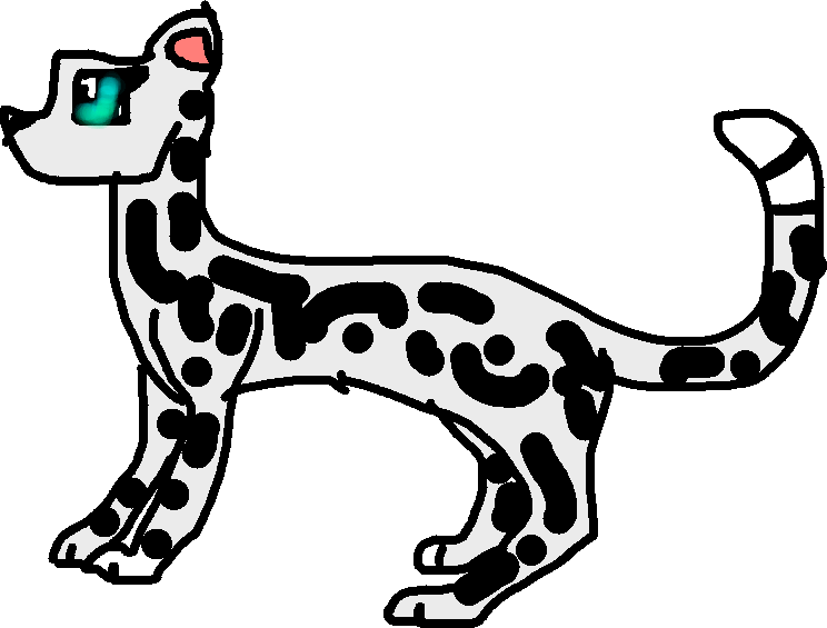 744x565 Make Your Own Snow Leopard!