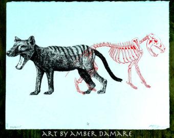 340x270 Thylacine Print Etsy