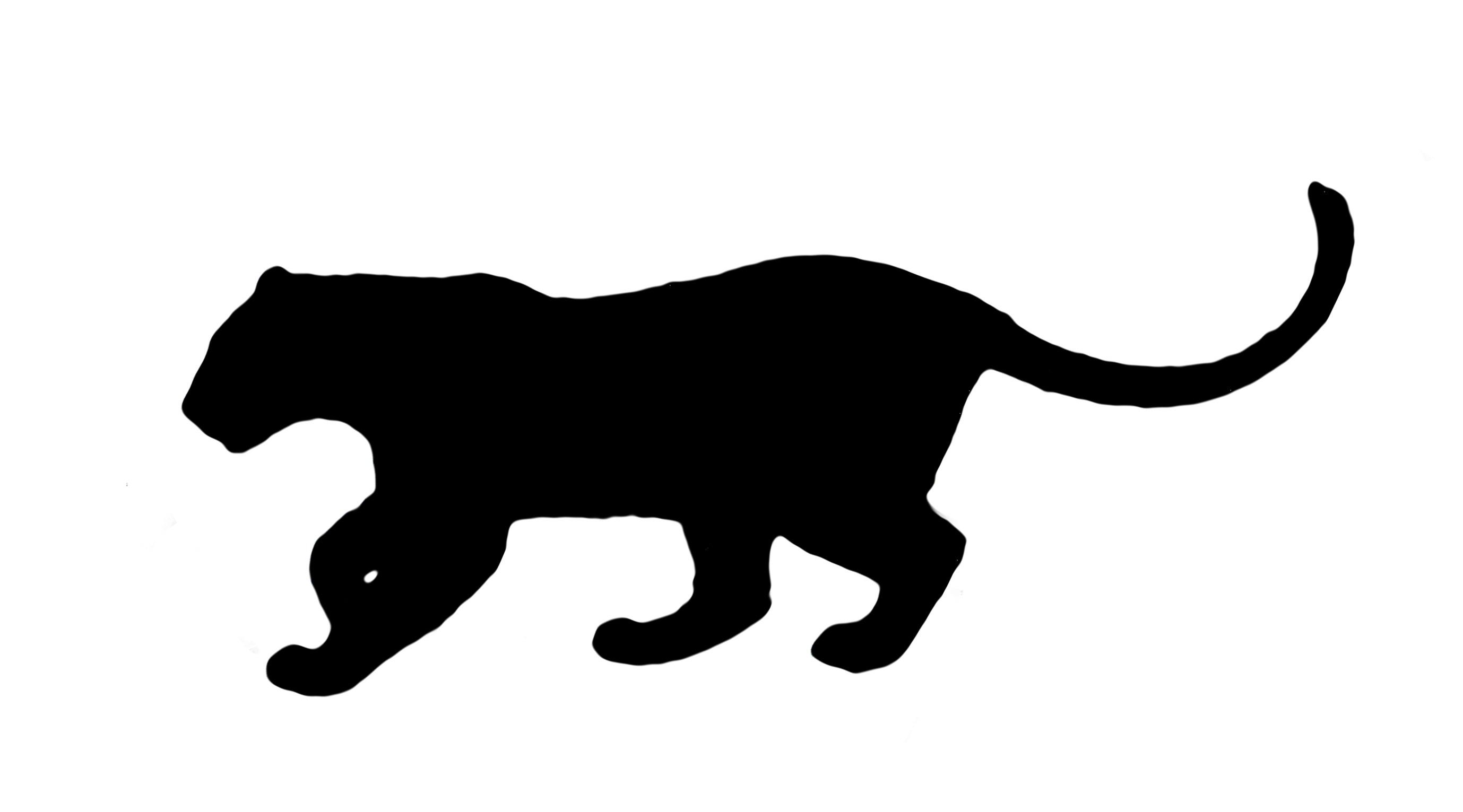2757x1531 Leopard Drawing Silhouette For Free Download