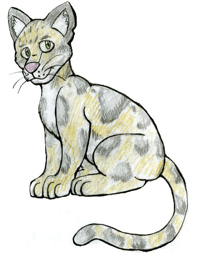 400x499 Clouded Leopard The Ebestiary