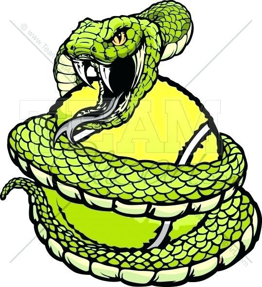 539x590 cobra snake drawing drawn cobra snake coil cobra snake drawing