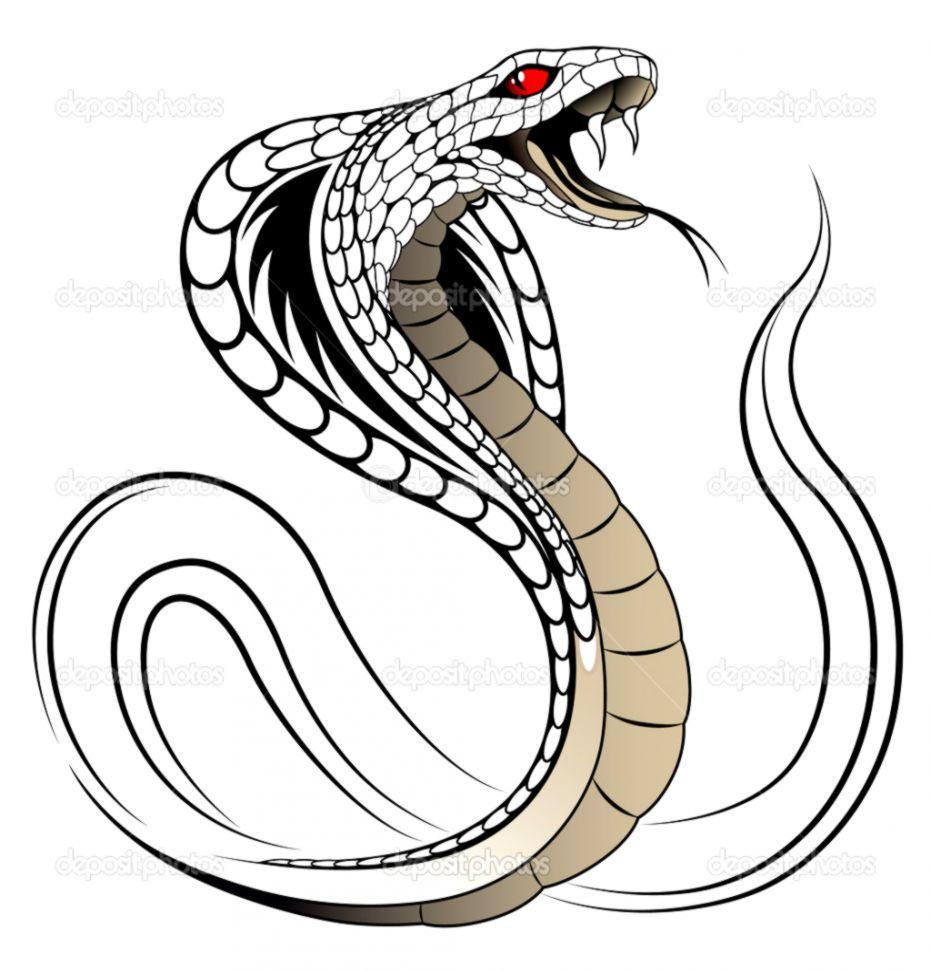 931x971 Cobra Snake Drawings Wallpapers Sinaga