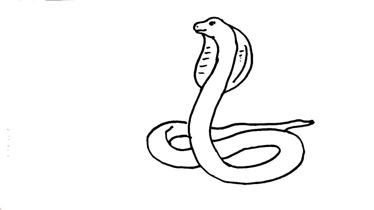 1280x720 How To Draw Snake King Cobra In Easy Steps For Children