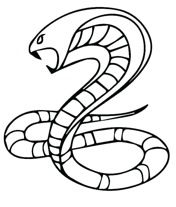 600x707 King Cobra Coloring Pages King Cobra Snake Coloring Pages Fresh
