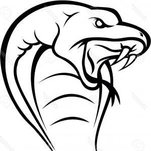 300x300 Snake Head Drawing Cobra Snake Head Royalty Free Cliparts Vectors