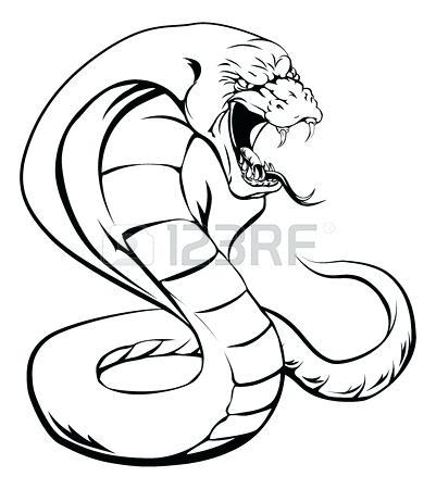 401x450 A Cobra Snake Cobra Snake Head Drawing Judebarker Club