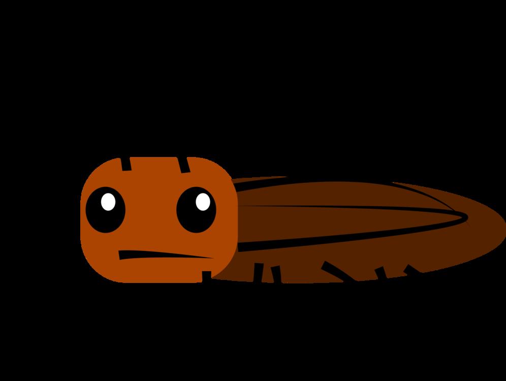 996x750 Madagascar Hissing Cockroach Drawing Cartoon Oriental Cockroach