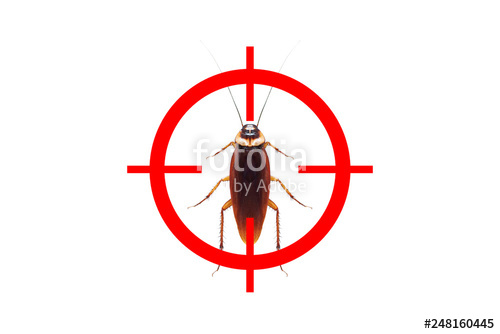 500x334 Drawing Gun Target To Kill Cockroach Pest Control Concept Stock