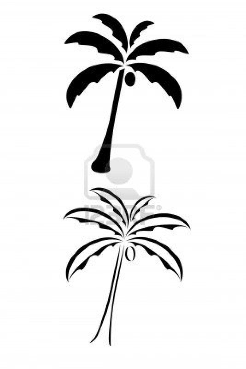 Coconut Palm Tree Drawing