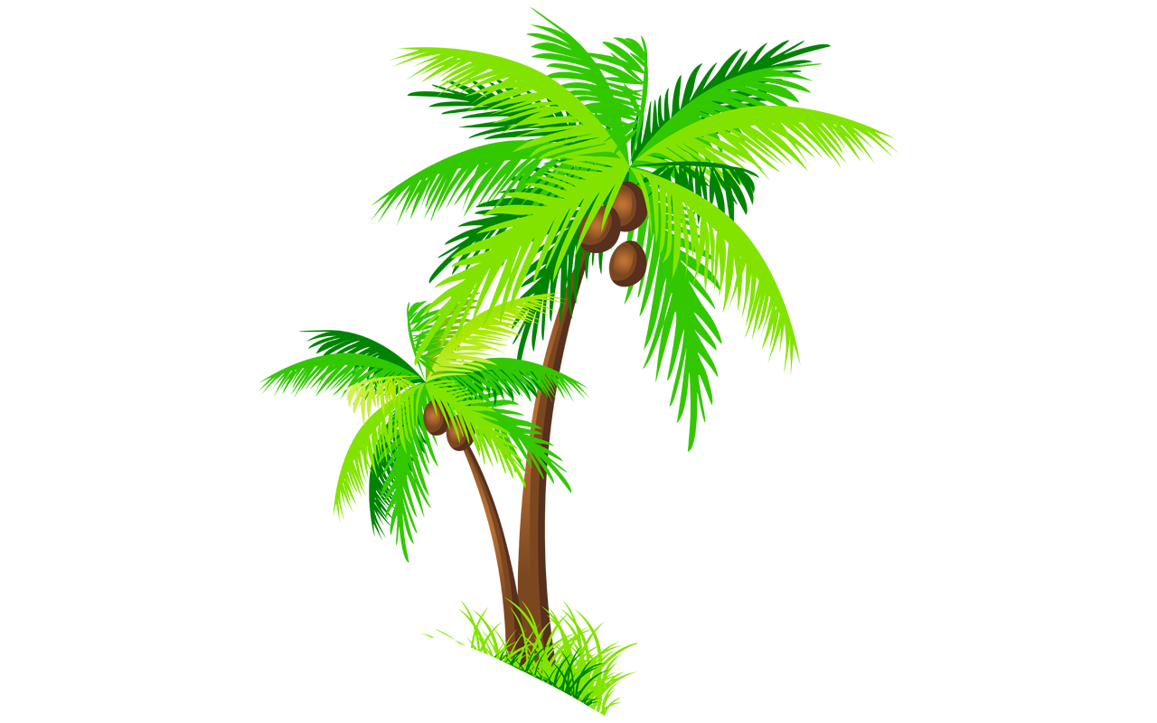 1280x800 Collection Of Free Hawaii Drawing Coconut Tree Download On Ui Ex