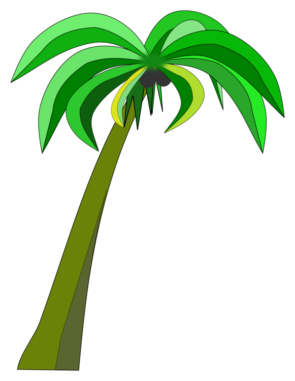 581x750 Palm Trees Coconut Can Stock Photo Drawing Cc0