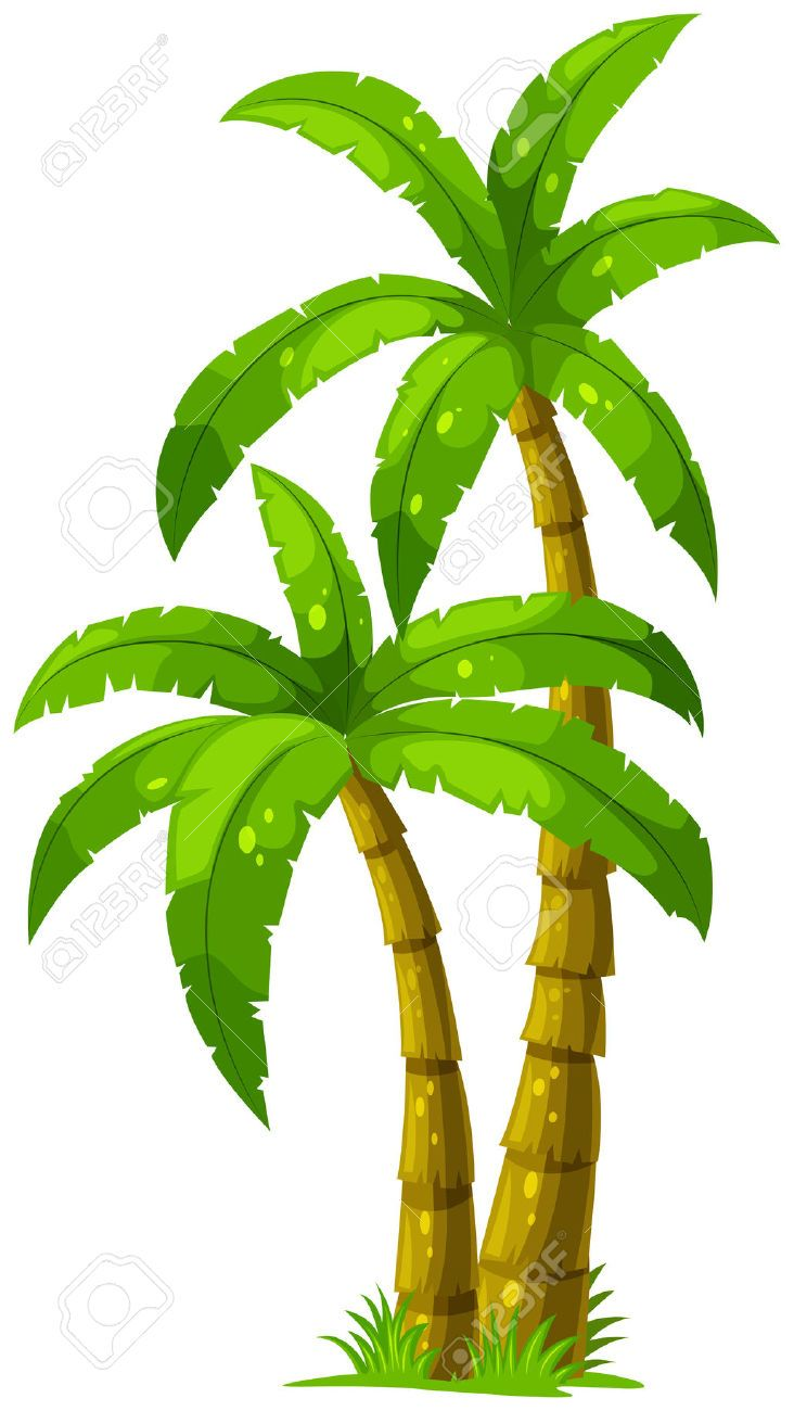 732x1300 Palm Tree Clip Art, Coconut Tree