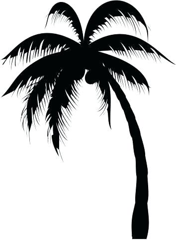 354x483 Easy Palm Tree Palm Tree Easy Easy Palm Trees To Draw