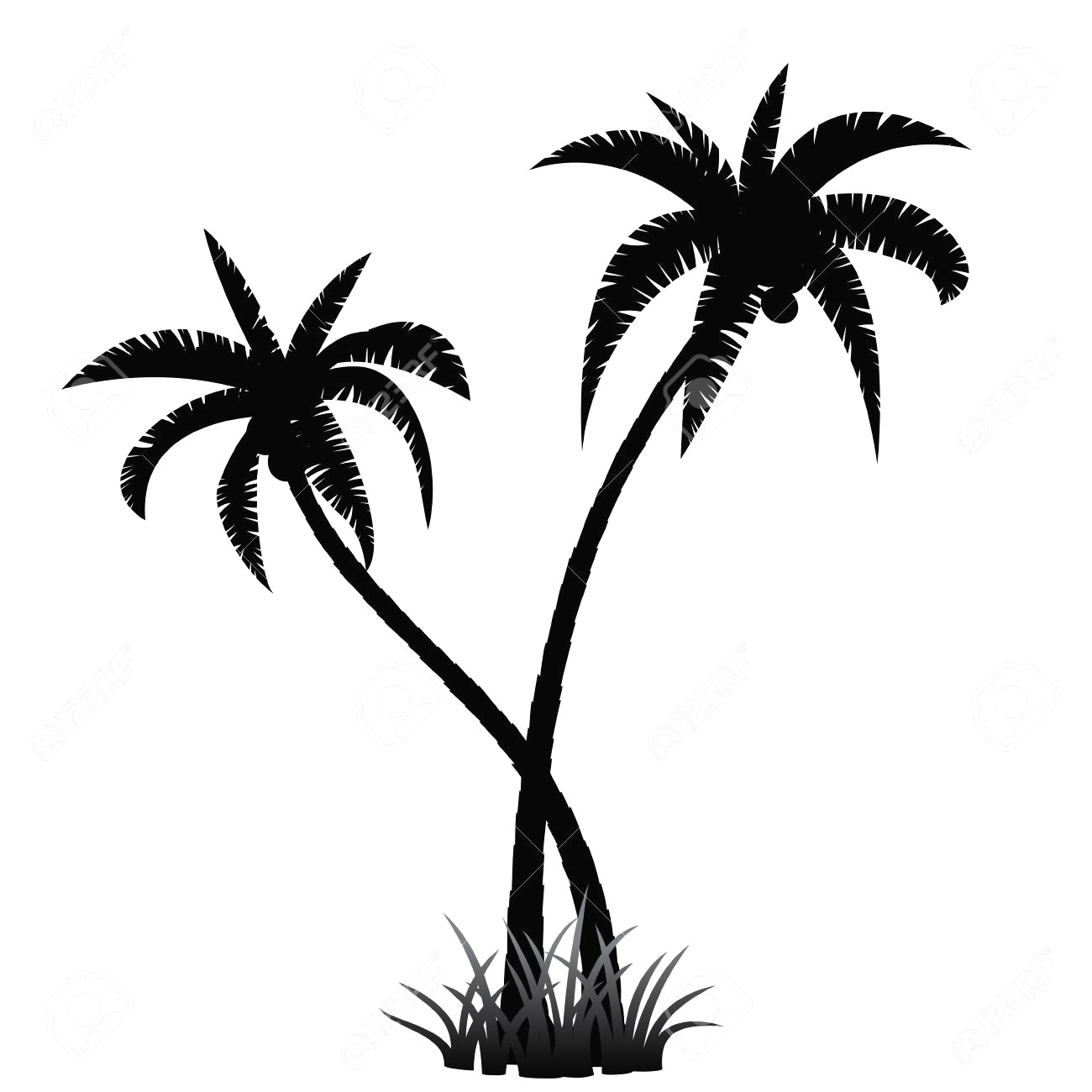 1300x1300 How To Draw A Palm Or Coconut Tree In Easy Steps For Children Avec