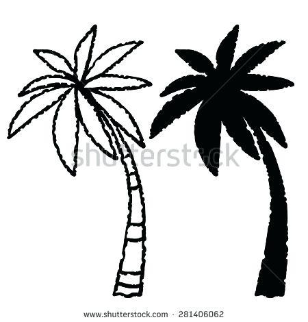 450x470 Palm Trees Drawings Coconut Palm Trees Line Black Silhouette Hand