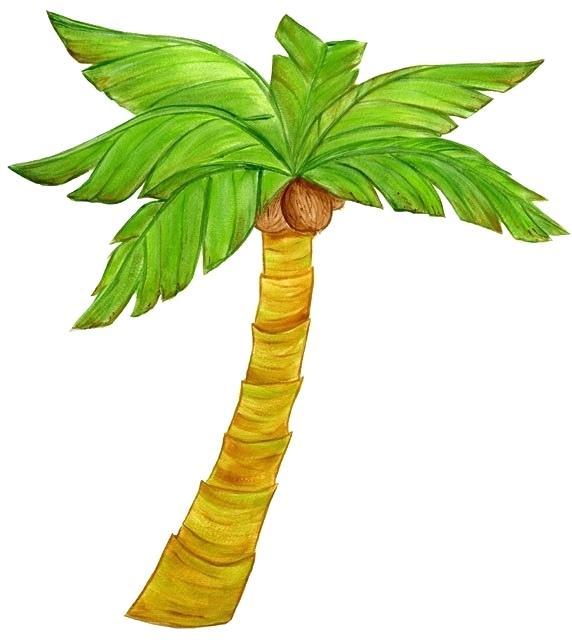 572x640 Plam Tree Drawing Palm Tree Images Palm Tree Drawing Sunset Nip