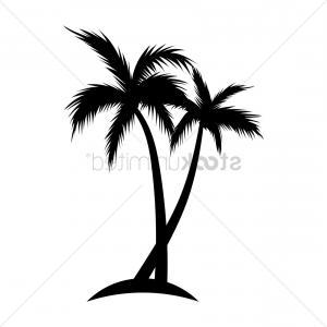 300x300 Ides Dimages De Coconut Tree Line Drawing Soidergi