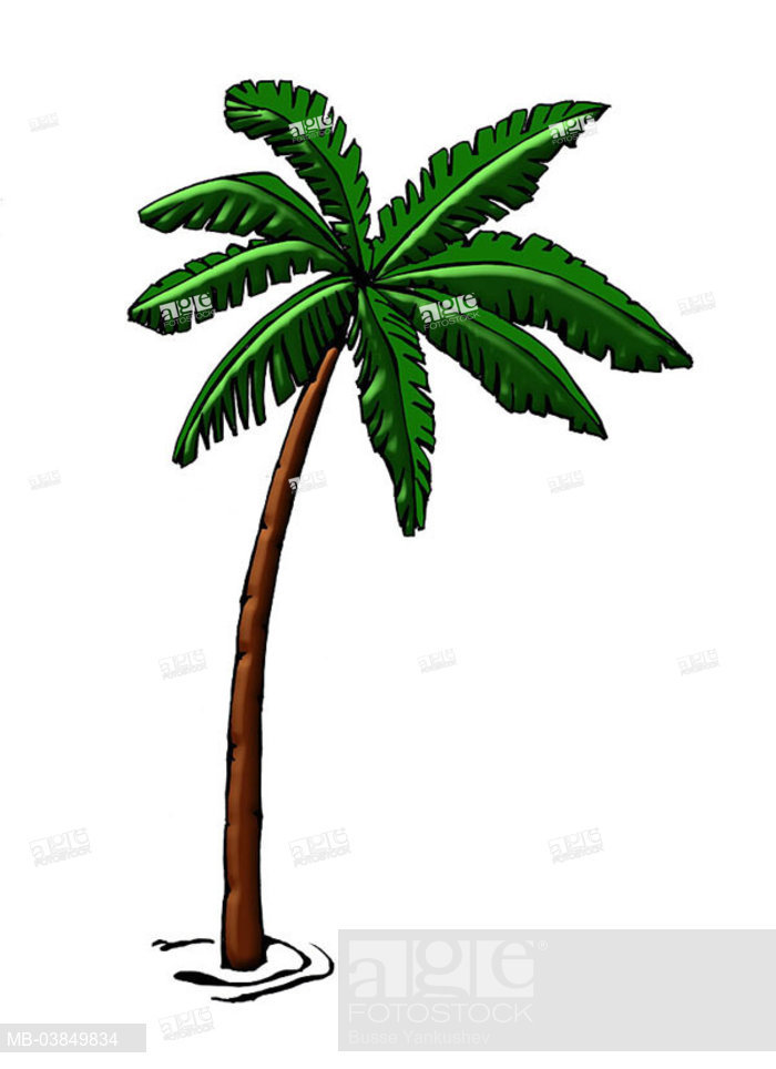 700x964 Illustration, Palm, Graphics, Drawing, Watercolor, Tree, Coconut