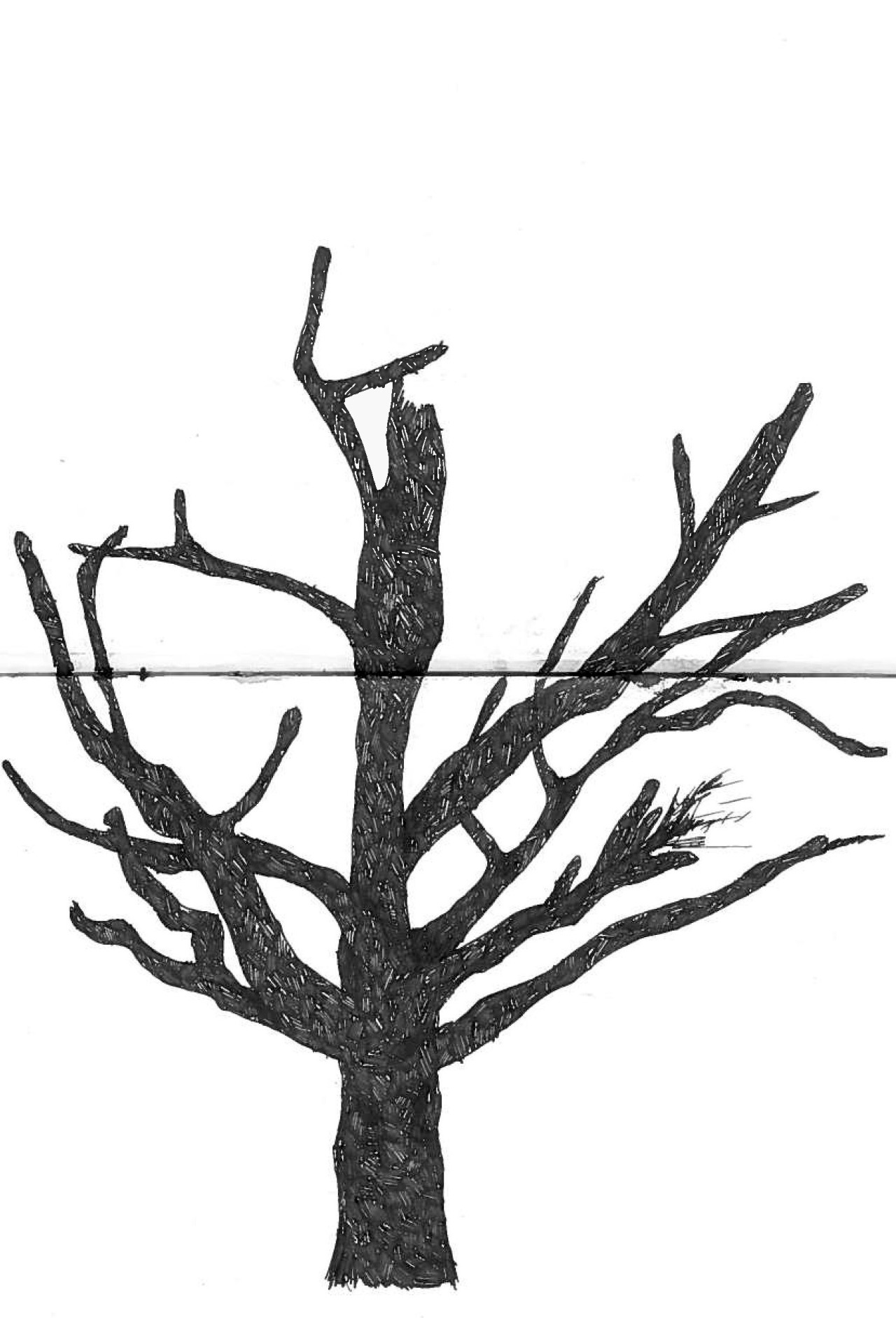 1280x1882 It Me !, I Started Drawing This Tree In My Frees