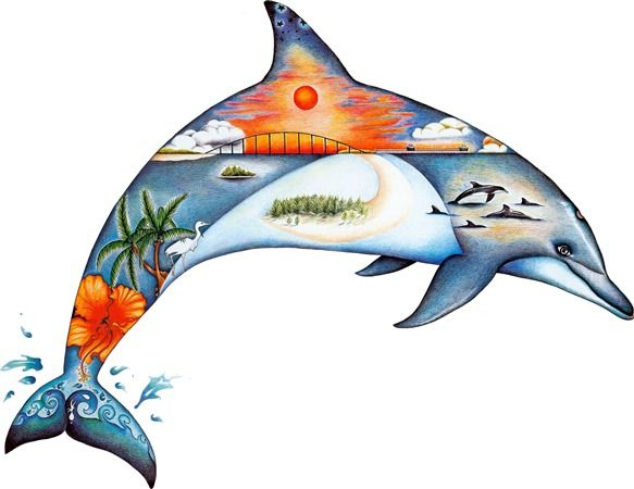 583x450 Dolphin Dream Colored Pencil Drawings In Tropical Artwork