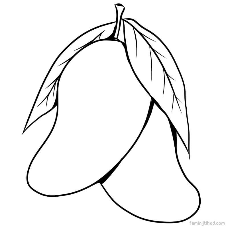 800x800 Mangoes Drawing Mango Color For Free Download