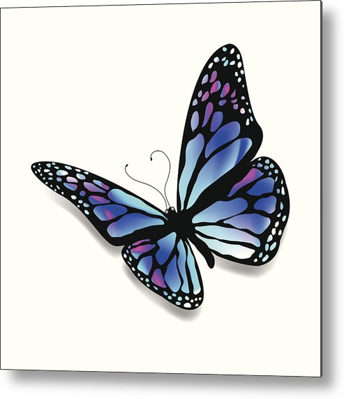 493x572 Colorful Butterfly Metal Print