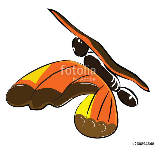 500x473 A Colorful Butterfly Flying With Its Wings Vector Color Drawing