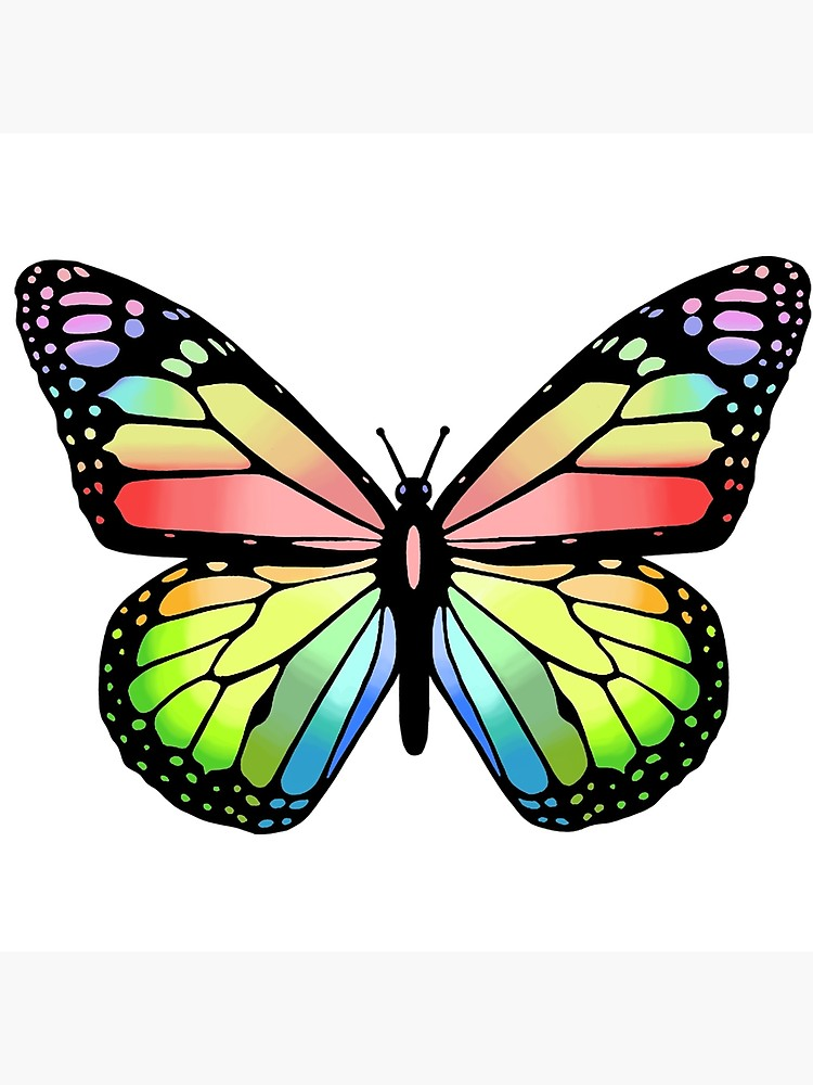 750x1000 Cute Colorful Butterfly Digital Drawing Photographic Print