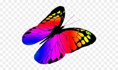 400x238 Download Free Png Free Butterflies Drawing, Free Butterfly Clipart