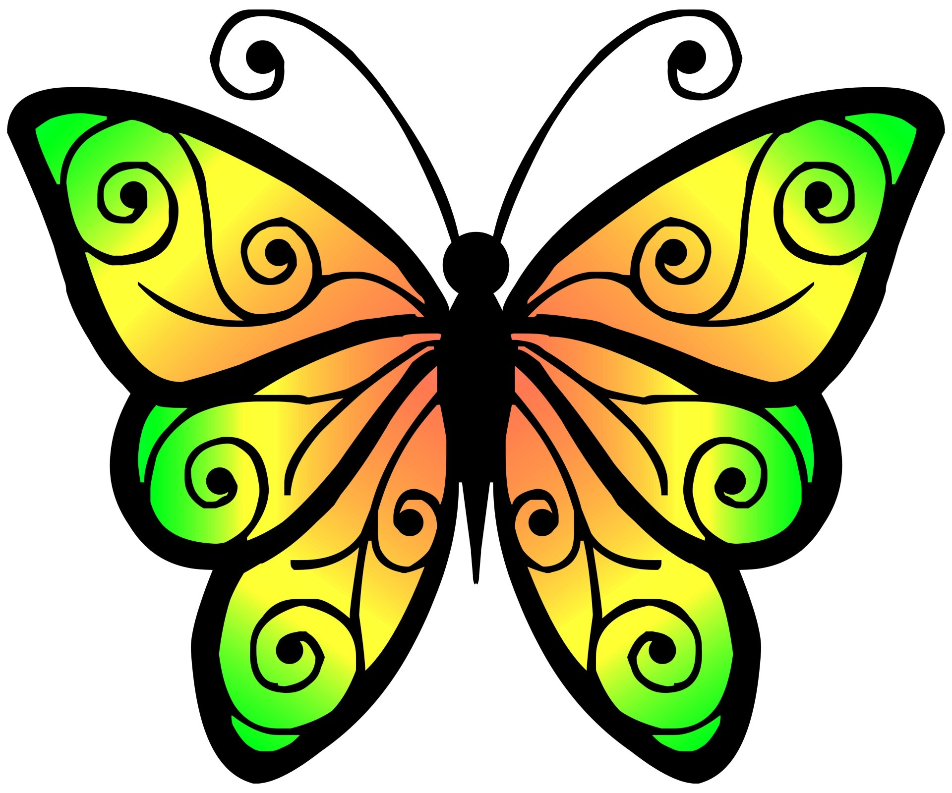 1920x1600 Drawing Of A Nice Colored Butterfly Free Image