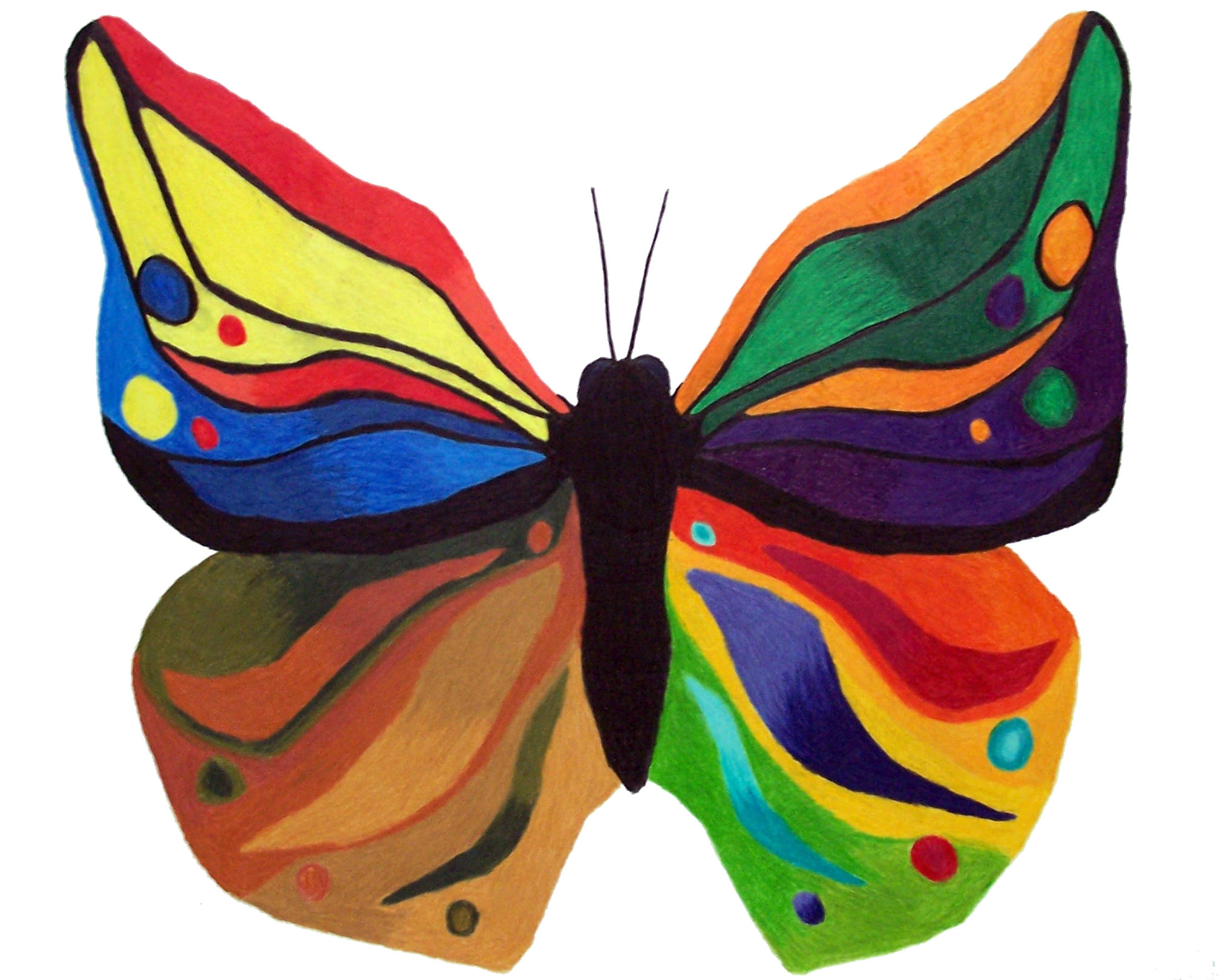 2016x1620 genuine butterflies images color butterfly drawings art ideas