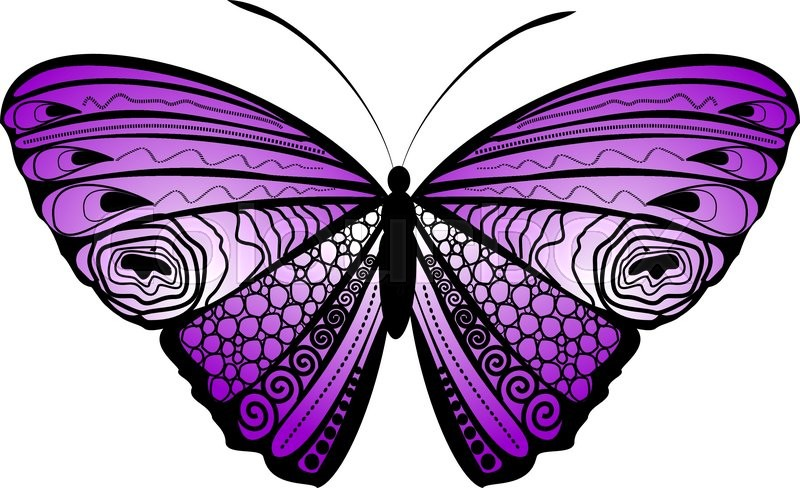 800x488 Background With Colorful Butterfly, Stock Vector Colourbox
