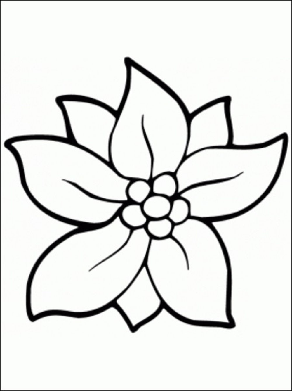 Free Flower Coloring Pages Printable Photo Album ...