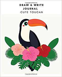 260x325 draw write journal cute toucan drawing book for kids journal