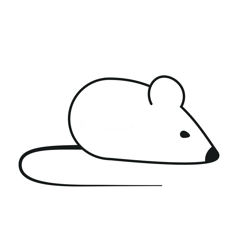800x800 Outline Of A Mouse Mickey Outline Computer Mouse Drawing