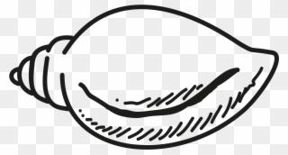 320x172 conch clipart, transparent conch clip art png download