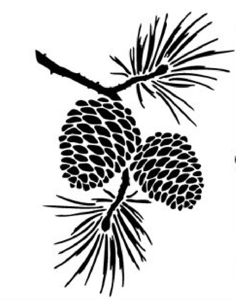 760x964 Pine Cone Graphic Design Logos Pine Cones, Wood Burning