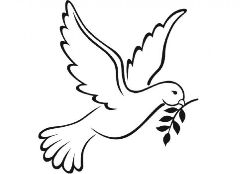 840x610 Dove Drawing Sad For Free Download