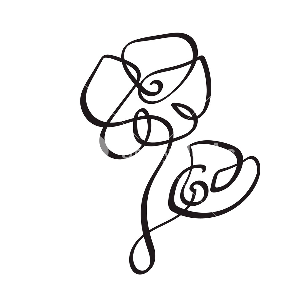 1000x1000 Continuous Line Hand Drawing Calligraphic Vector Flower Concept