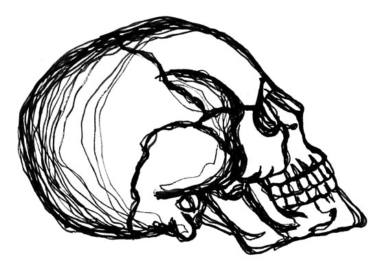 550x395 Continuous Line Skull Pen Drawing Posters