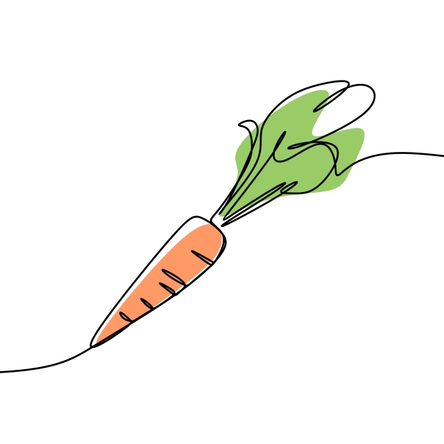 640x640 Carrot Continuous Line Art Drawing Vector, One Line, Vegetarian