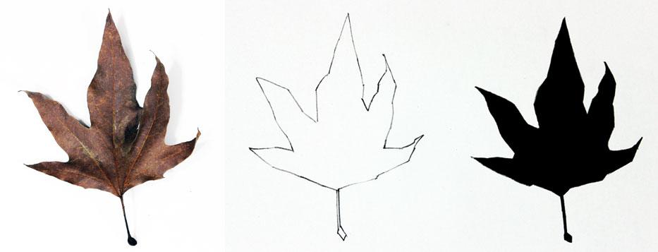 933x357 Contour Line Drawing