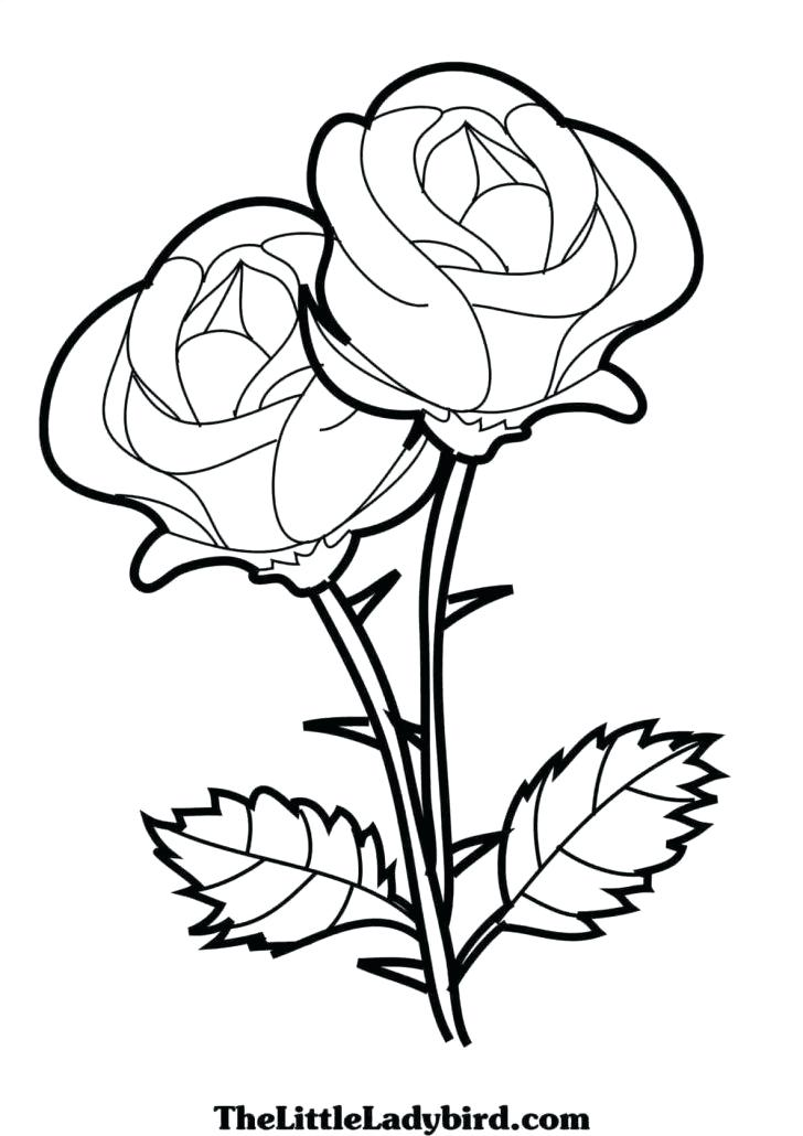 728x1030 Simple Designs To Draw