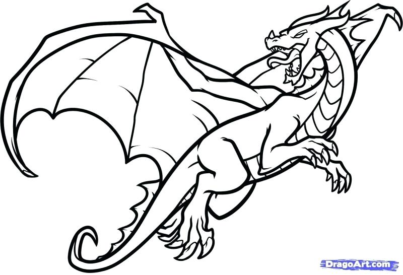 800x546 How To Draw A Dragon Easy Step