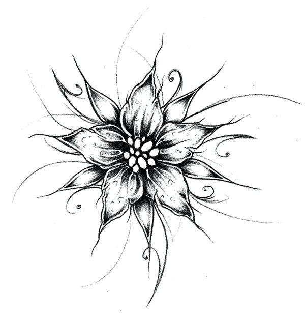 600x625 Cool Flower Designs Best Art Projects To Do For Art Images