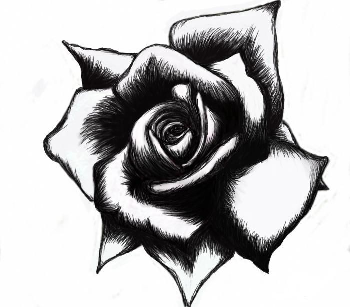 700x615 Black And White Tattoo Designs Free Download Clip Art